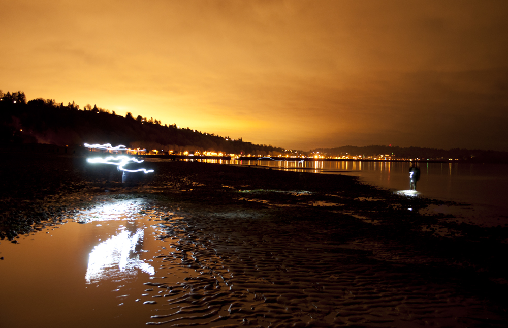 Tidepooling_at_Night_Golden_Gardens_7547