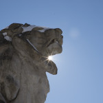 DC Sightseeing: The Lion Statues of the Nation's Capital